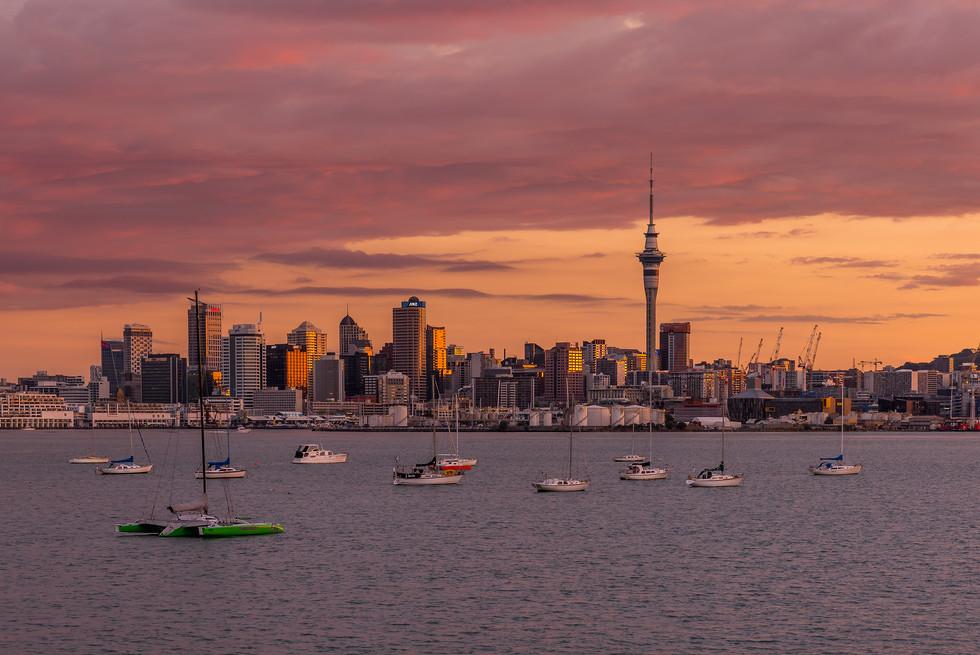 Sun Glow on Auckland