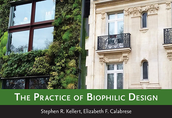 The Practice of Biophilic Design -