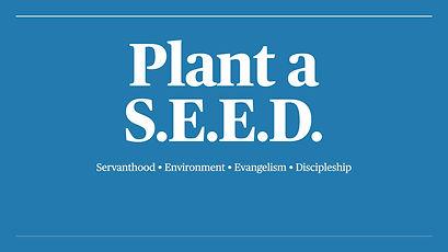 Plant a S.E.E.D..001 (1).jpeg
