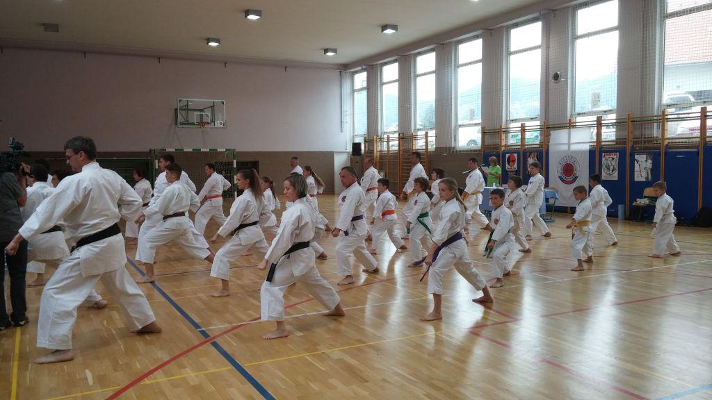 Shotokan karate DO klub Ruše