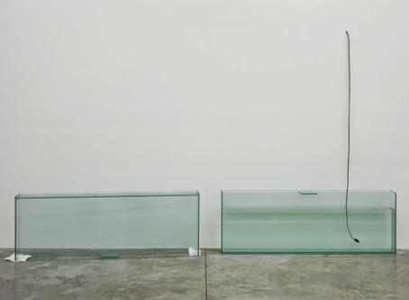 Jason Dodge at Casey Kaplan Gallery