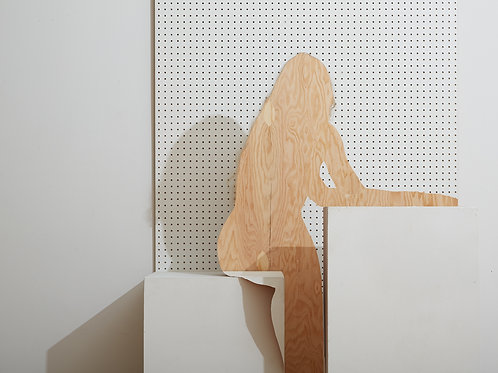 BILL DURGIN Hailey with Pegboard and Plywood (2016)