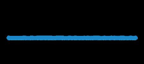 lavalsusa-logo.png