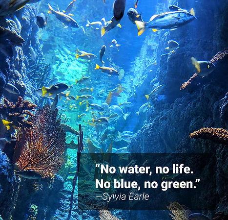 No-water-No-life.jpg