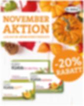 Aktion_Salvator_dr_böhm_kürbis_november_