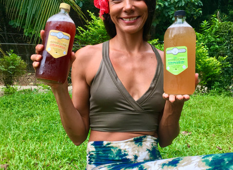 Have you ever tried Kombucha?