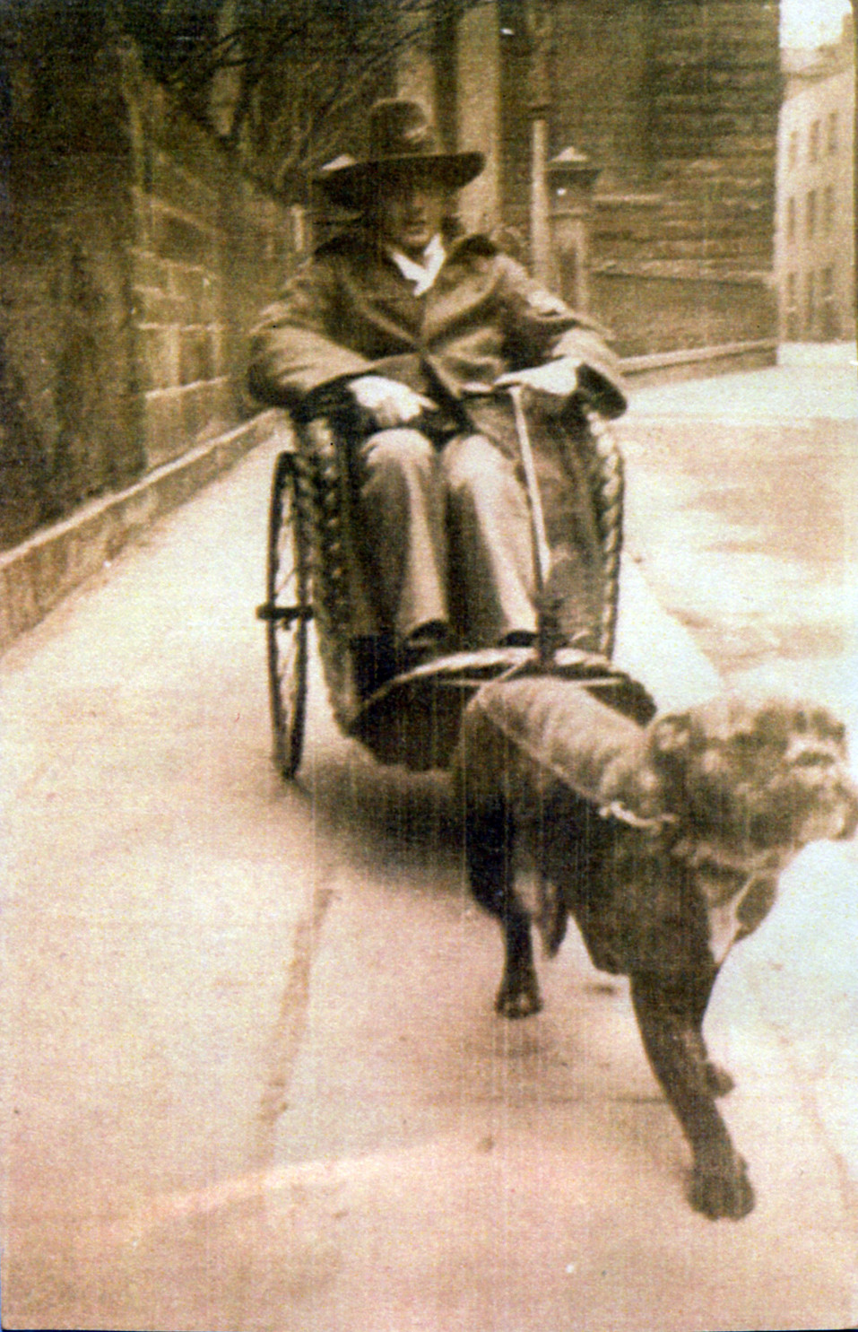A man sitting in an old fashioned wheelchair with bulldog on lead in front