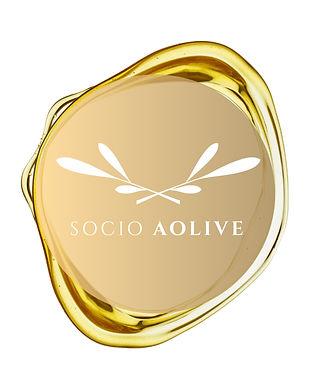 Socio_AOLIVE.jpg