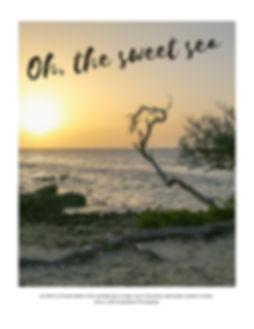 Oh the Sweet Sea by Aruba Beach Photography