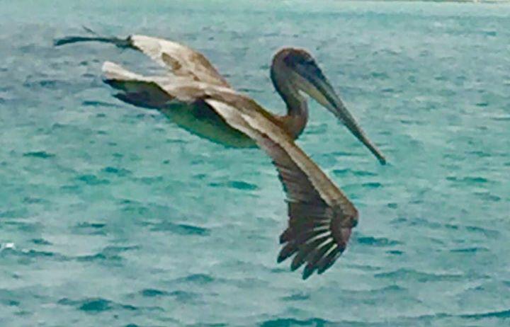Oranjestad Marina