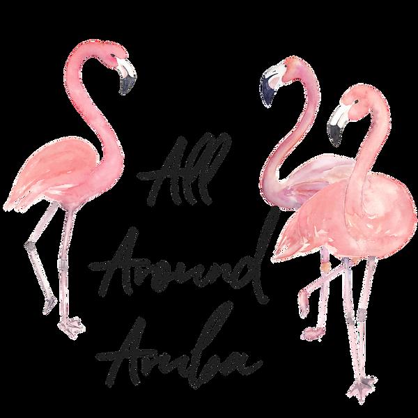 All Around Aruba Flamingo Logo