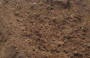 terre-vegetale1.jpg