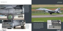 DH004 - MiG 29-005