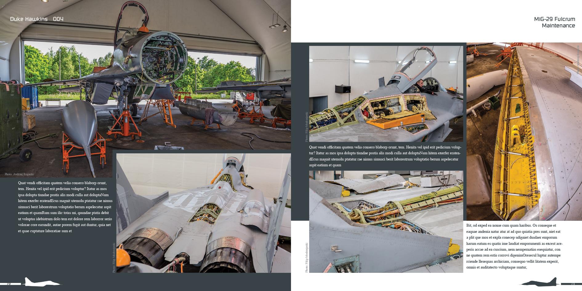DH004 - MiG 29-006