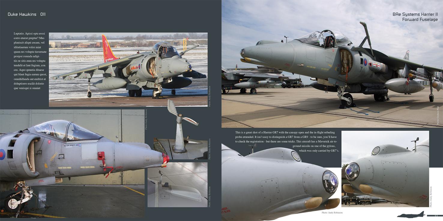 DH011 - Harrier II-003