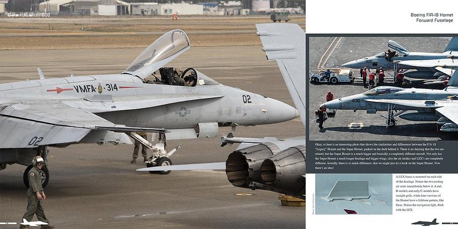 DH008 - Hornet-002.jpg