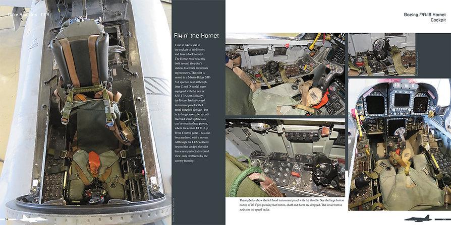 DH008 - Hornet-003.jpg