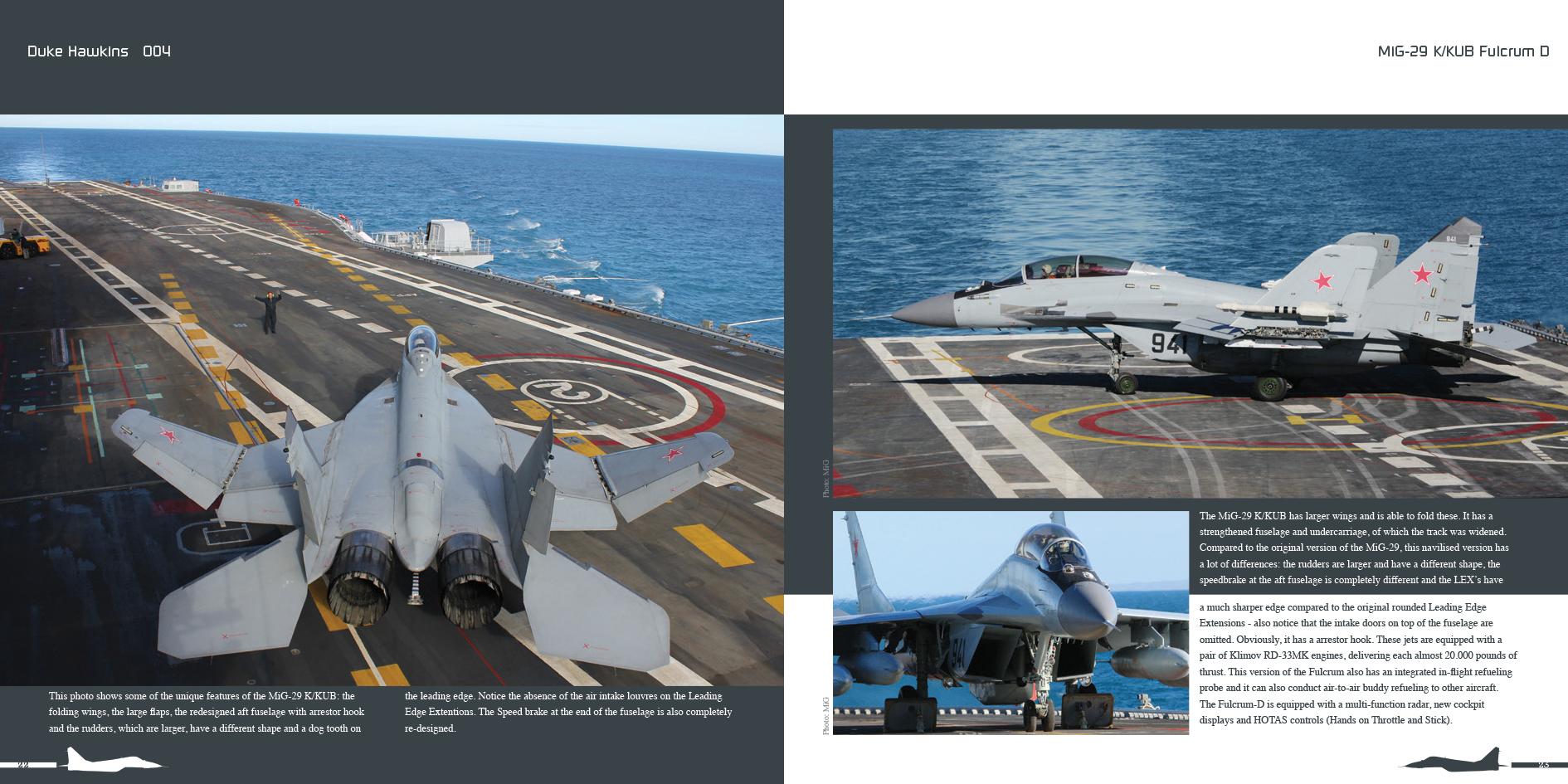 DH004 - MiG 29-003