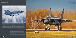 DH012 - MiG 31-002