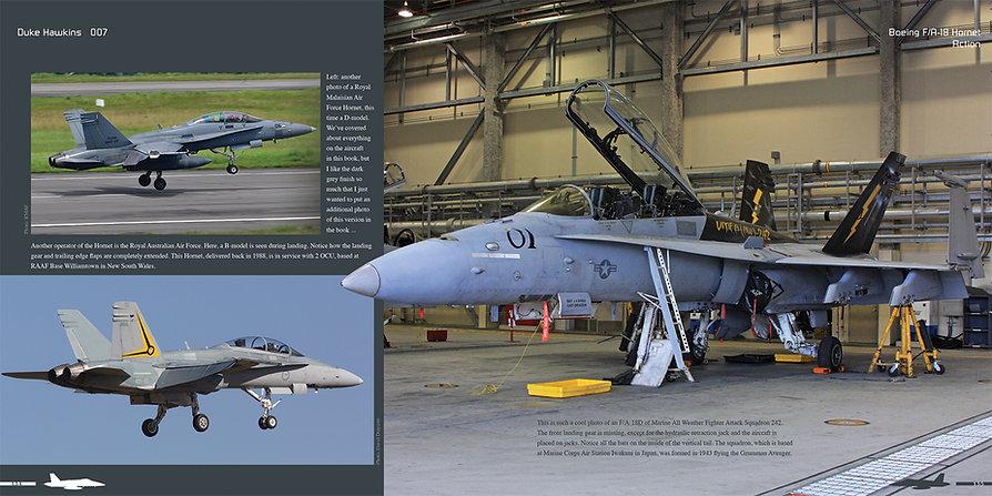 DH008 - Hornet-006.jpg