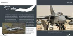 DH005 - Tornado-002