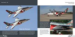 DH018 - Alpha Jet-005