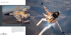 DHSLE001 - Dark Falcon 006