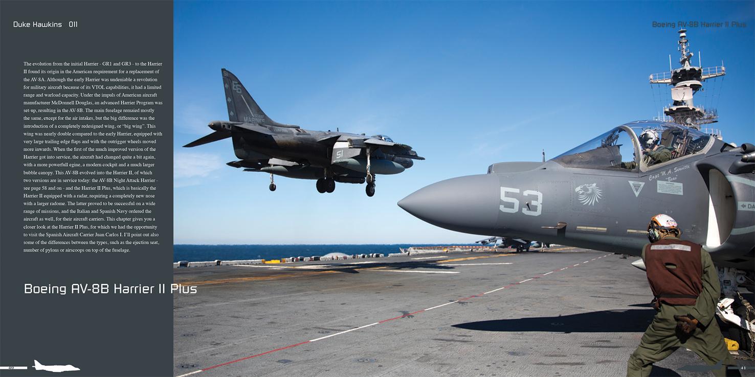 DH011 - Harrier II-004
