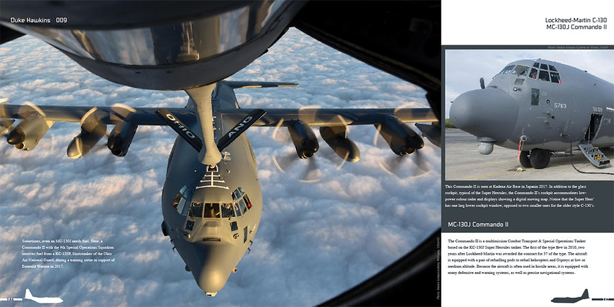 DH009 - C-130-007.jpg