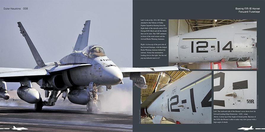 DH008 - Hornet-004.jpg