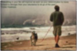 Brian Agnew, Dog Behaviorist