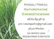 Magali Pineau - Naturopathe - Plouay, Meslan
