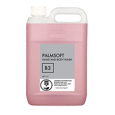 palmsoft wl.png