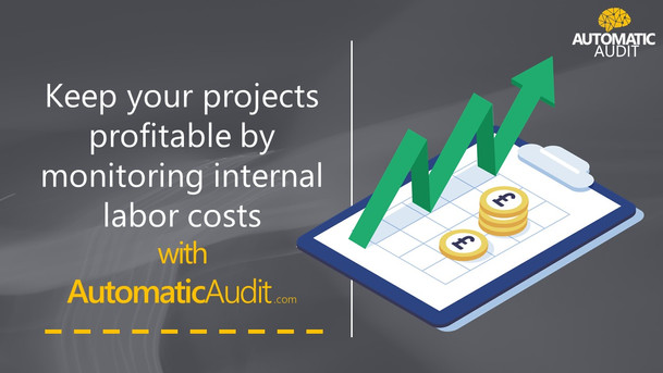 project profitability with Automatic Audit