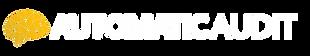 AUTOMATICAUDIT-transparent black.png