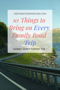 Things to bring on a family road trip