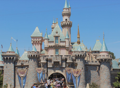 10 Essential Things to Bring to Disneyland or Disney World