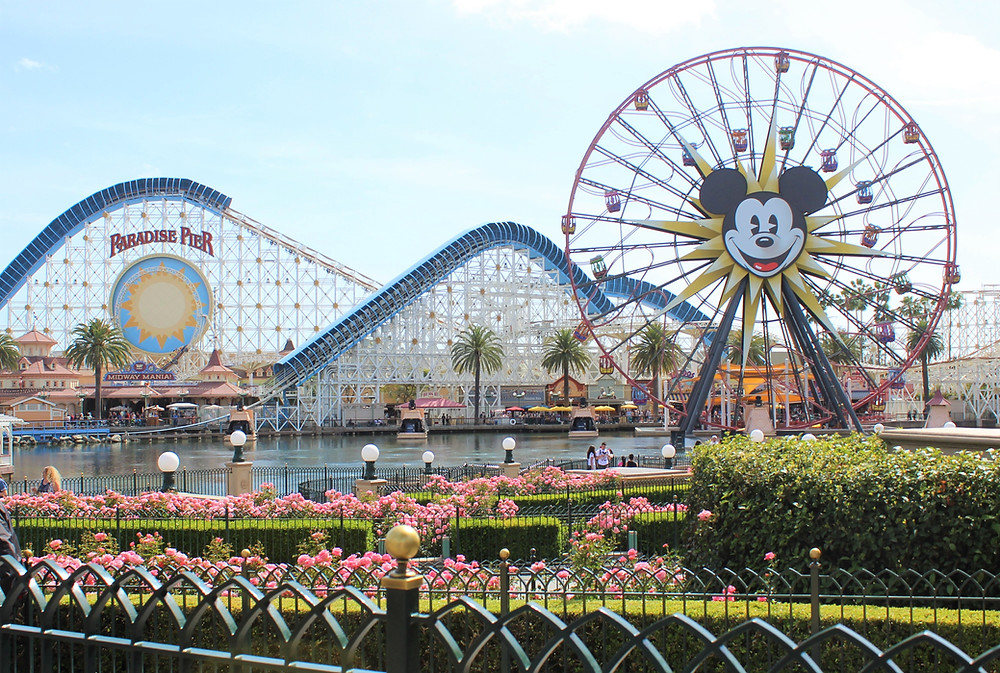 What are the pros and cons of staying on or off Disney Property