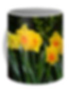 Veronica Randolph Batterson Pixels Merchandise