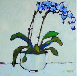 Blue Orchid LEXMUTT075