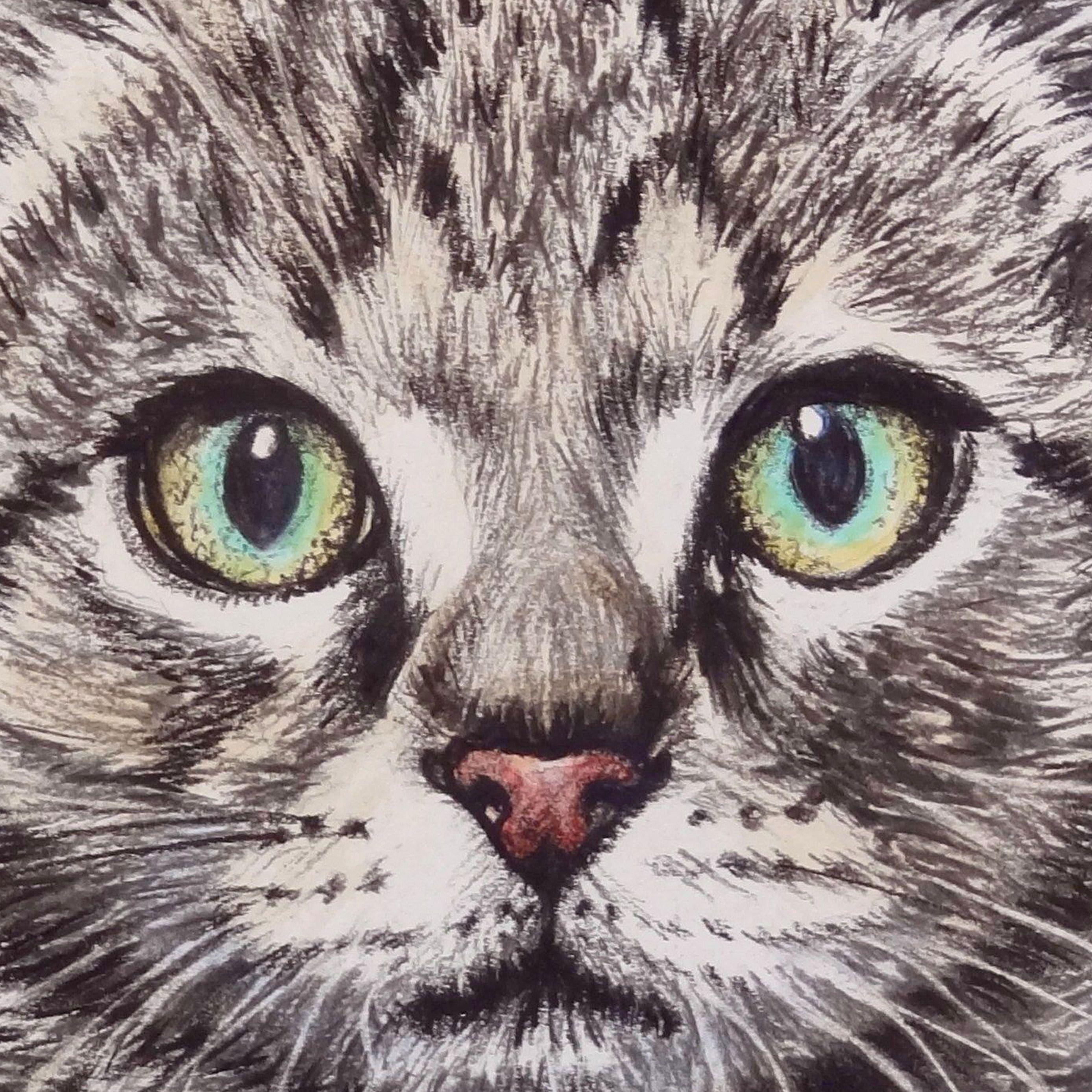 LEXMUTT072 Whiskers