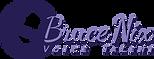 bnix_logo_transparent.png