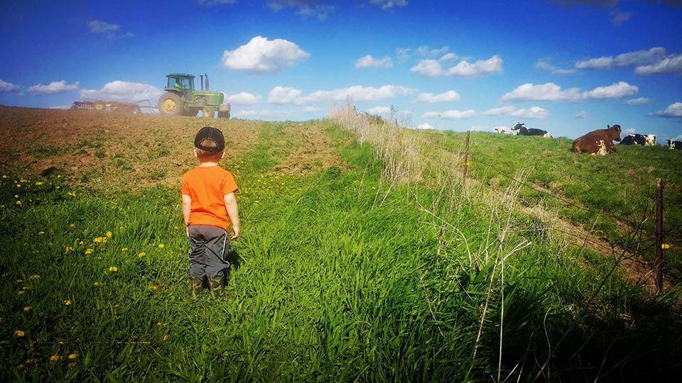 3b farming