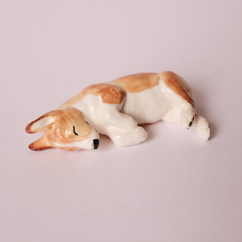 Спящий щенок корги