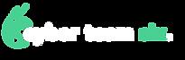 ct6_logo.png