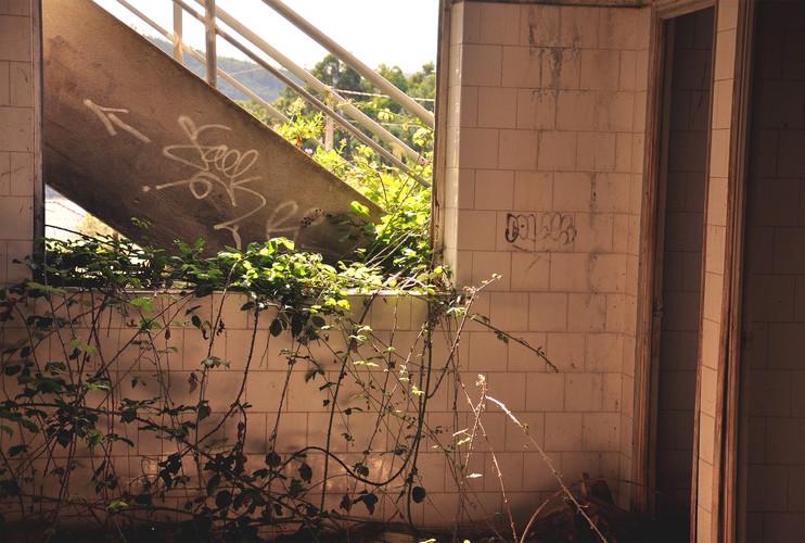 Detalle ventana invadida por vegetación y escalera exterior de acceso a segunda planta