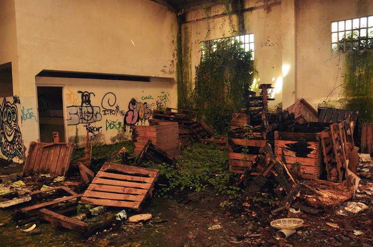 Restos de cajas y material abandonado