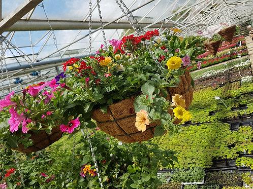 "16"" Wire Hanging Basket"