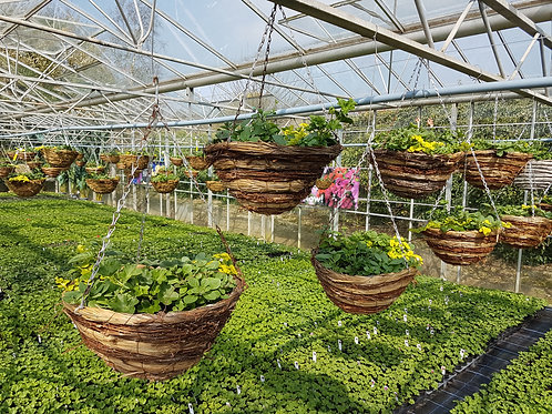"14"" Round Bottom Hanging Basket"