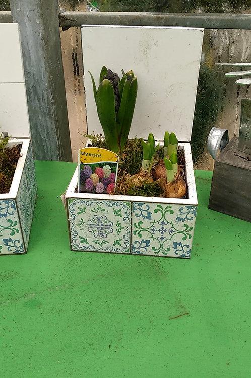 Garden bulb tile cube